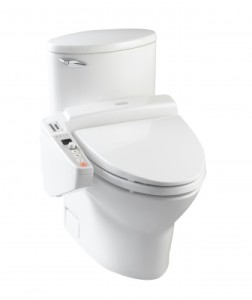flapperless toilet installation in Miami FL